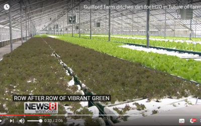 See H2O Farm on NEWS8