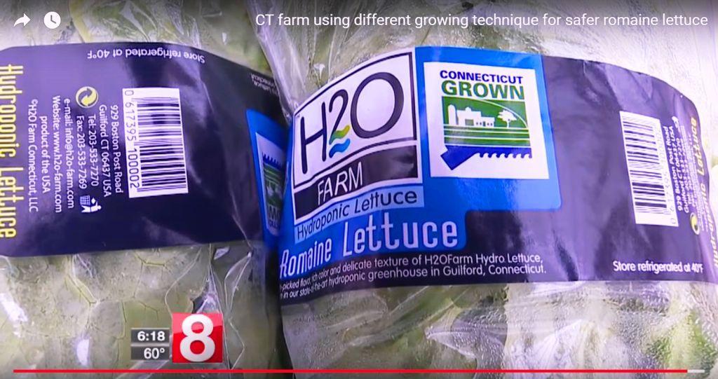 Safer Romaine Lettuce